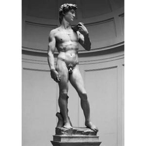 david de michelangelo miguel angel puzzle ricordi