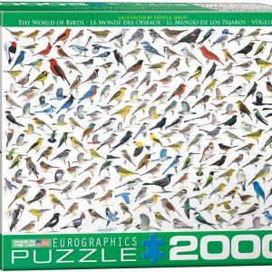 8220-0821 Puzzle Eurographics El Mundo de los Pajaros de David Sibley de 2000 piezas