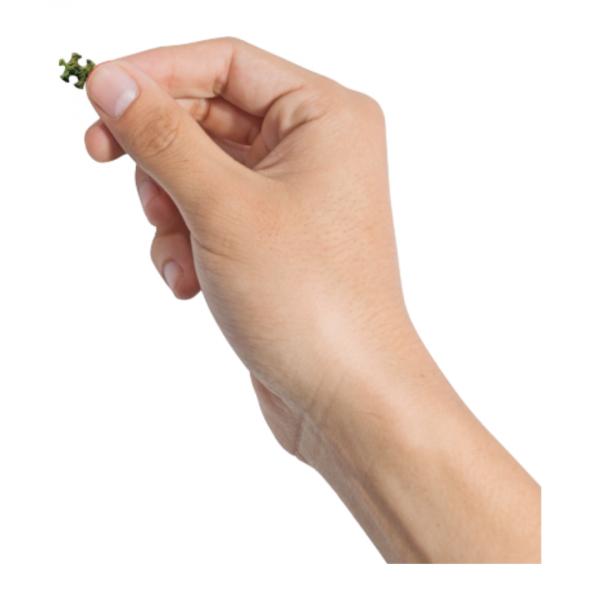 puzzle piezas pequeñas cheatwell